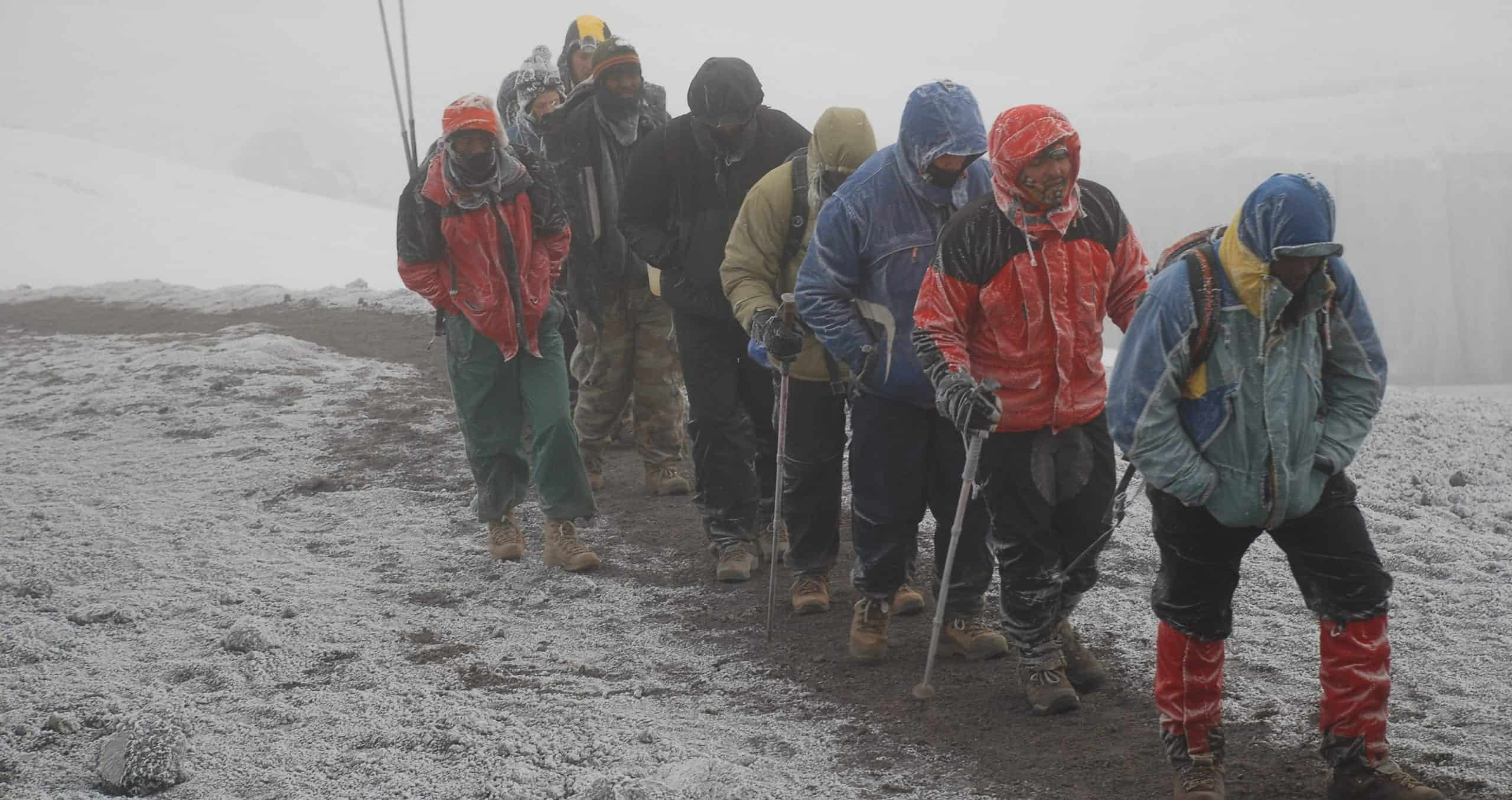 A row of trekkers and guides all frosted by snow trudge towards Kilimanjaro's summit on the crater rim